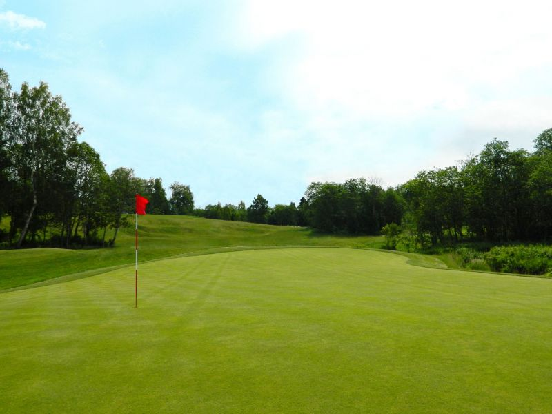 Raevo Golf Amp Country Club Компания Quot Процион Quot